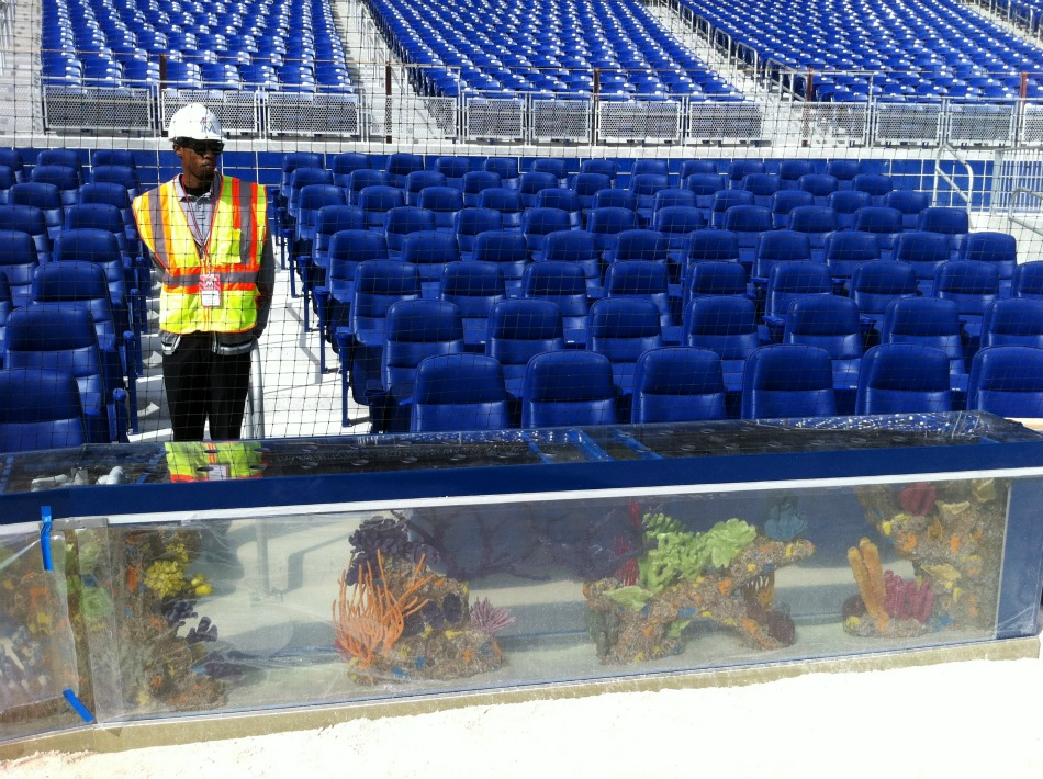 Only in miami 160 tropical fish qualify for room and for Marlins fish tank